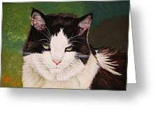 Wozzle - Domestic Cat Greeting Card