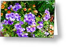 Wp Floral Study 2 2014 Greeting Card