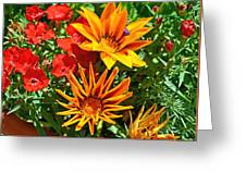 Wp Floral Study 5 2014 Greeting Card