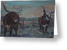 Wright Longhorns Greeting Card