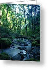 Wyeth Creek Greeting Card