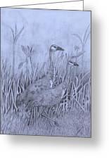 Wyoming Sandhill Cranes Greeting Card