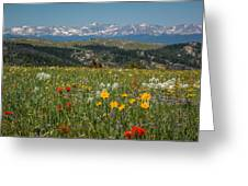 Wyoming's Winds Greeting Card