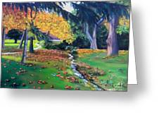 Wyomissing Creek Greeting Card