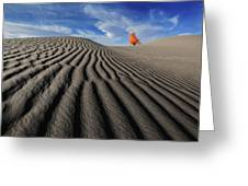Xin Jiang 09 Greeting Card
