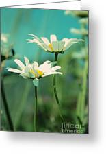 Xposed - S07b Greeting Card by Variance Collections