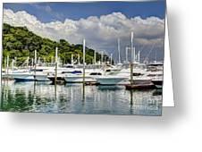 Yacht Lot Greeting Card
