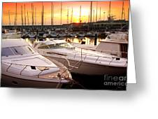 Yacht Marina Greeting Card by Carlos Caetano