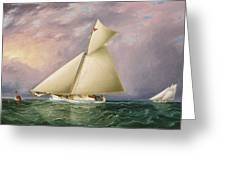 Yacht Race In New York Harbor Greeting Card