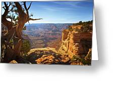 Yaki Point Greeting Card by Susan Rissi Tregoning