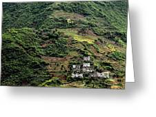 Yangtze Hillside Greeting Card