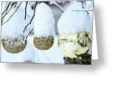 Yarn In The Snow Greeting Card