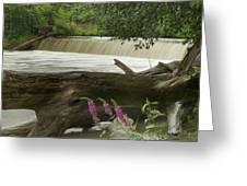 Yates Dam Greeting Card