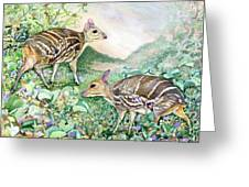 Yello-striped Mouse Deer Greeting Card
