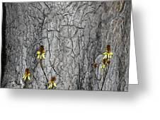 Yellow Aloe Flowers And Tree Greeting Card