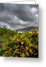 Yellow Flowers And Grey Clouds, Stormy Weather Over Sea In Scotland. Greeting Card