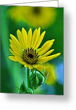 Yellow And Green 2 Greeting Card