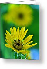 Yellow And Green 3 Greeting Card