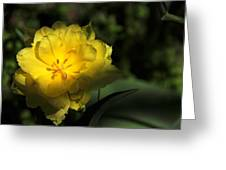 Yellow And Green No. 3 Greeting Card