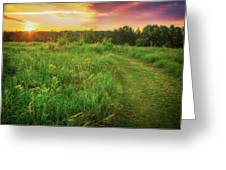Retzer Nature Center - Yellow And Purple Summer Sunset  Greeting Card