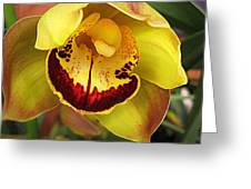 Yellow And Russet Orchid Greeting Card