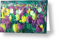 Yellow And Violet Tulips Greeting Card