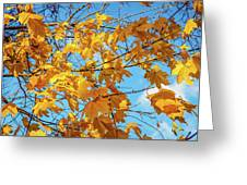 Yellow Autumn Leaves 2 Greeting Card
