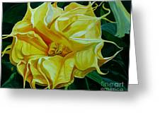 Yellow Blast Greeting Card