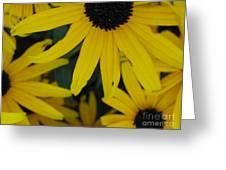 Yellow Bunch II Greeting Card