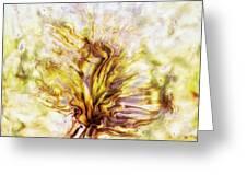 Yellow Burning Yucca Greeting Card