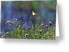 Yellow Butterfly Flyaway Greeting Card
