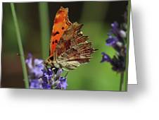 Yellow Butterfly No.2 Greeting Card