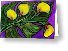 Yellow Calalilies Greeting Card