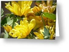 Yellow Chrysanthemum Greeting Card