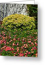 Yellow Coleus And Lantana At Pilgrim Place In Claremont-california Greeting Card
