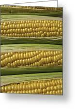 Yellow Corn Greeting Card