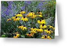 Yellow Daisies And Purple Sage Greeting Card
