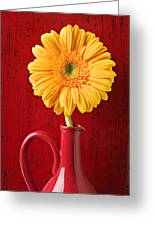 Yellow Daisy In Red Vase Greeting Card