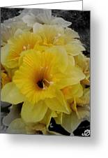 Yellow Days  Greeting Card