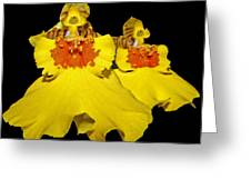 Yellow Dresses Greeting Card