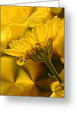 Yellow Drip Greeting Card