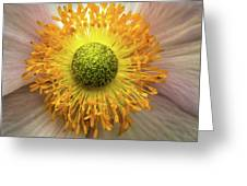 Yellow Eye Greeting Card