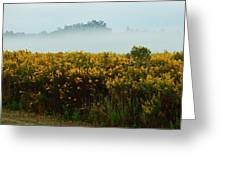 Yellow Field And The Fog Greeting Card