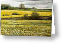 Yellow Fields Greeting Card