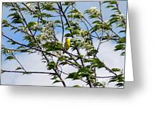 Yellow Finch And Flowers Greeting Card