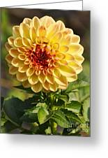 Yellow Flora Greeting Card