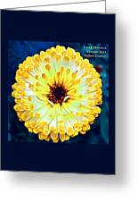 Yellow Flower H A Greeting Card