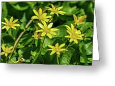 Yellow Flowers On A Green Carpet Greeting Card