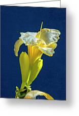 Yellow Glue Blue #f9 Greeting Card