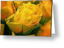 Yellow Green Rose Greeting Card